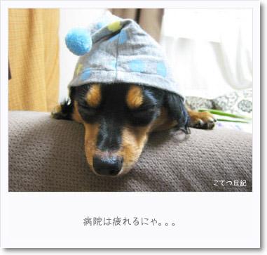 [photo24230387]090724-4
