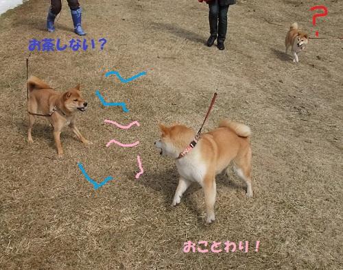 虎徹VS凛