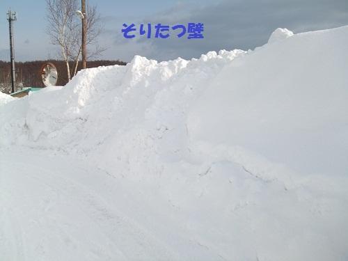 DSCF0590.jpg