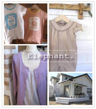 Elephant-9.jpg