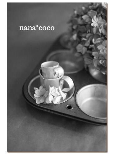 nana*coco 5