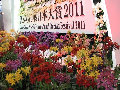 世界らん展2011#2
