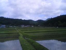 関西の里山
