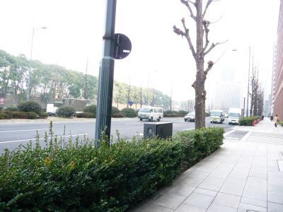東京ぶらりひとり旅015日比谷通り二重橋前01