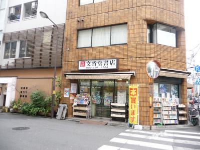 2010.2.19-東京ぶらりひとり旅032神田古書街