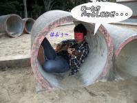 hafu-01.jpg