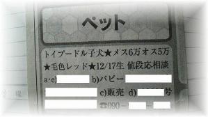 2011031009390000.jpg