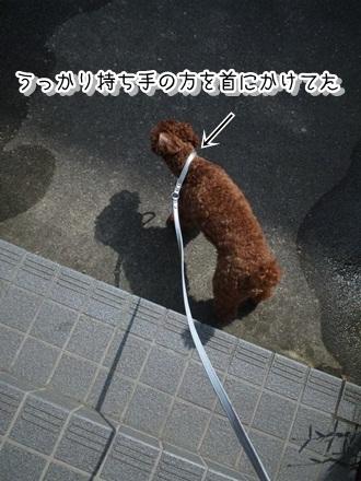 002_20110612223123.jpg