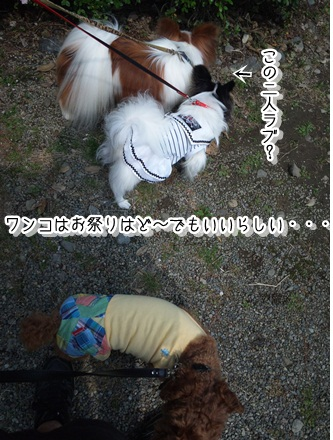 003_20110605231732.jpg