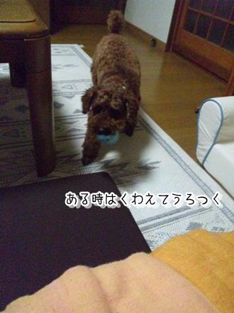022_20110721231841.jpg