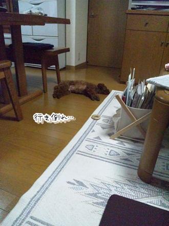 024_20110713232305.jpg