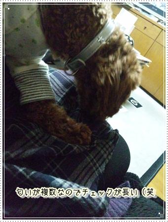 039_20110302000624.jpg