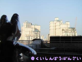 DSC01319.jpg
