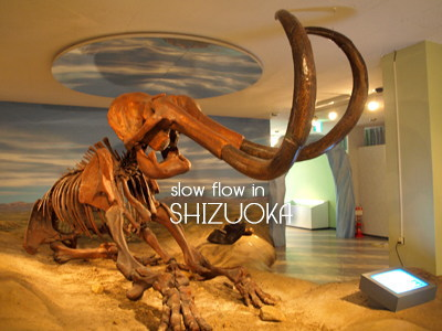 1004shizuoka09