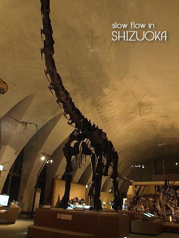 1004shizuoka13
