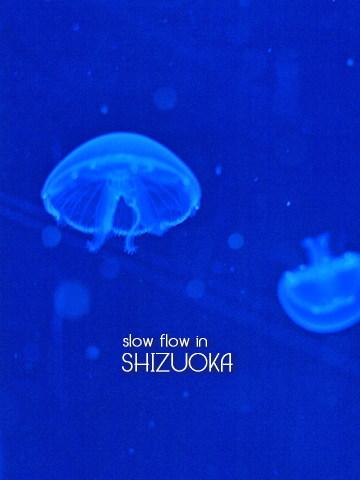1004shizuoka18