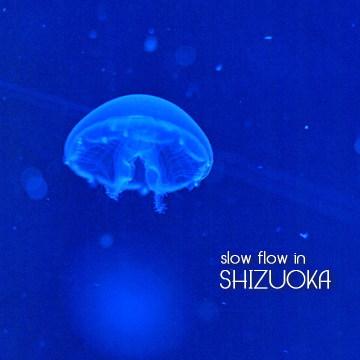 1004shizuoka23