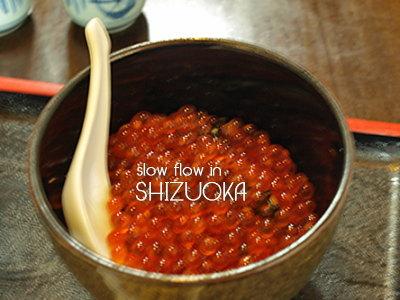 1004shizuoka38