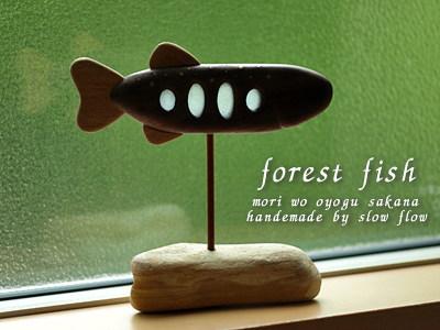 1007forestfish07