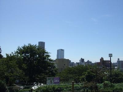 西郷山公園からの景色2