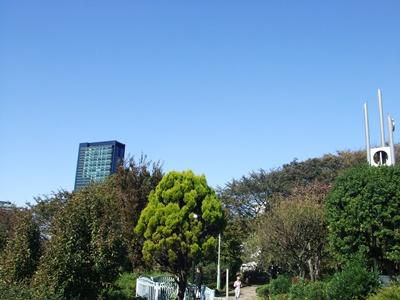 西郷山公園からパチリ