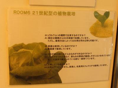 PASONA O2(パソナオーツー) 水耕農業
