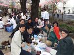 播磨坂の桜並木 記念写真