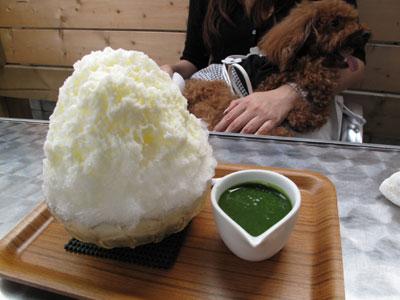 天然氷のかき氷屋『埜庵』(kohori-noan)  練乳抹茶