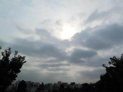 西郷山公園 曇り