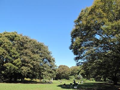 秋晴れの代々木公園