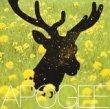 Apogee - 夜間飛行
