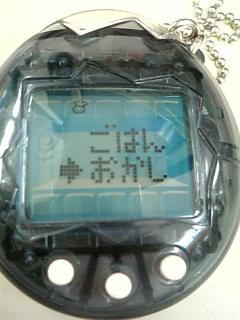 DVC00175-103.jpg