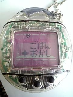 DVC00221-103.jpg