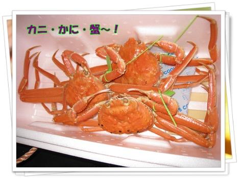 001_20091201121621.jpg