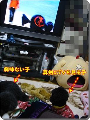 004_20100127182426.jpg