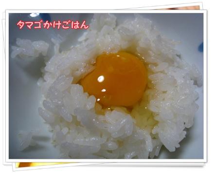 004_20100510114711.jpg