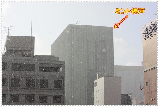 017_20100209215855.jpg
