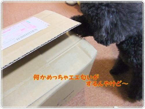 024_20120409151322.jpg