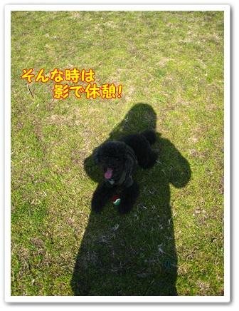 035_20100221220952.jpg