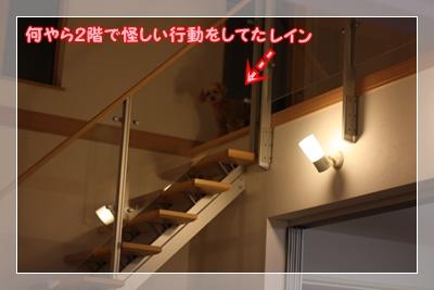 048_20100314173402.jpg