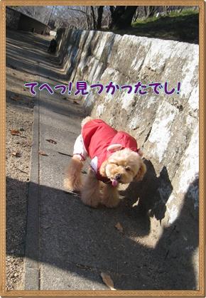 055_20100107143711.jpg