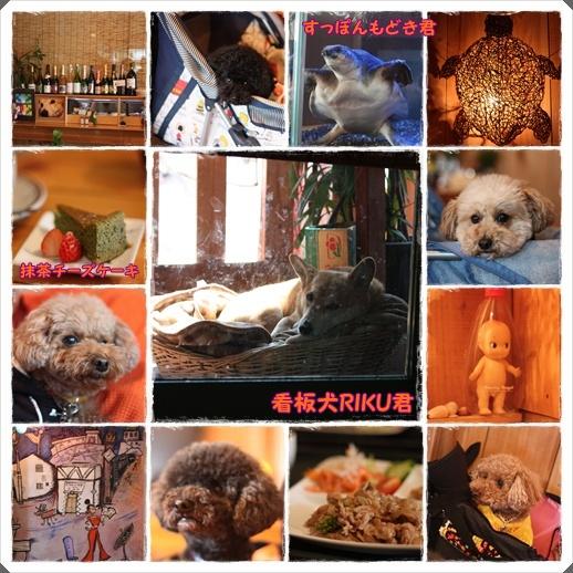 尼崎cafe
