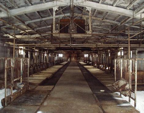 牛舎が廃墟になる日
