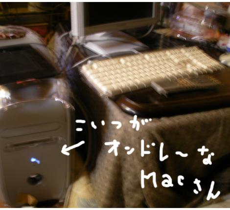 SANY0342.jpg