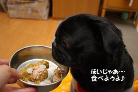 食べようよ