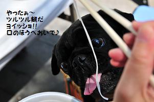 ツルツル麺だ~