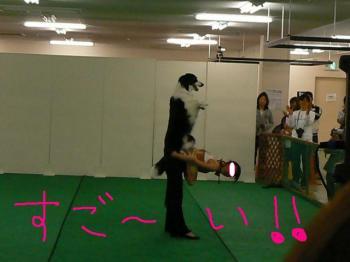 繝ォ繝シ繧キ繝シ縺セ縺セ繧医j・狙convert_20090528163558