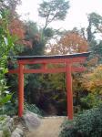 御山神社とかー