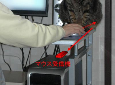 mouse acceceptor