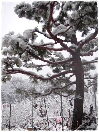 2012-02-29朝②